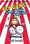 flyguysamazingtricks