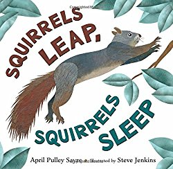 Squirrels Leap, Squirrels Sleep by April Pulley Sayre